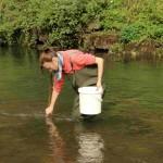 Ein kleiner Fluss, der wie hier im Bild die Nagold bei Calw von einer Biologin noch vom Ufer aus begangen werden kann, gehört zu unseren Untersuchungsgewässern.