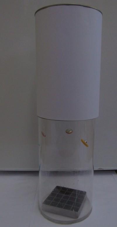 Aufbau Zooplanktonteiler n. Geller, oben Einfülllkammer (weiß), unten Sedimentierkammer (Plexi) mit Flächenteiler (Edelstahl + Gaze)
