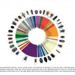 Besipielgrafik aus dem GBOL-Verbundbericht